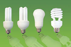 Variety of CFL bulbs