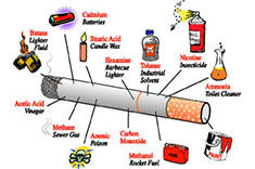 Inside ingredients of a cigarette